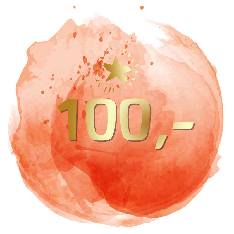 100-Euro-Spenden-Los